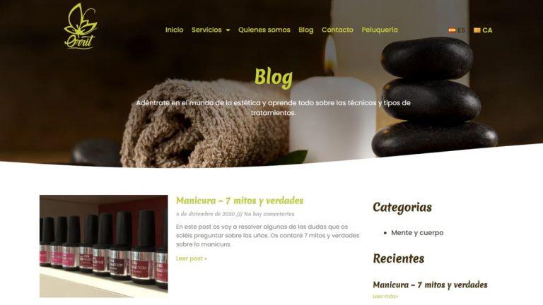 Captura sitio web Orrit